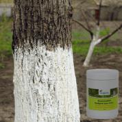 Afwitmiddel voor boomstammen | Boomwitsel
