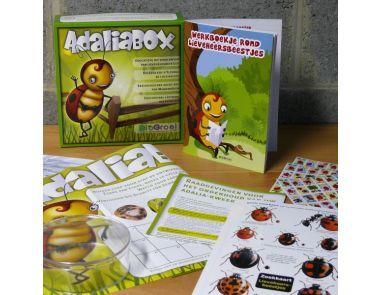 Schoolpakket lieveheersbeestjes