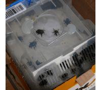 Mini-hive