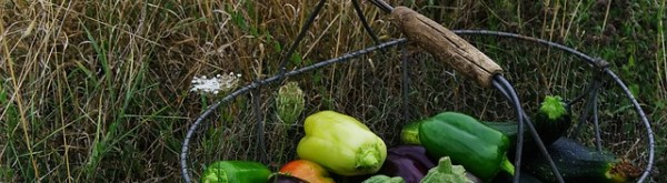 Voordelen biologisch tuinieren