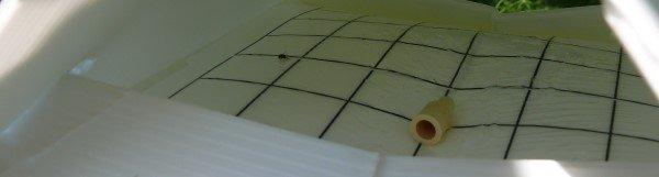 Hoe werken feromoonvallen?