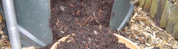 Verschil tussen wormenmest en wormenaarde?