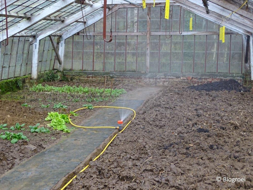 Biogroei serre vochige grond