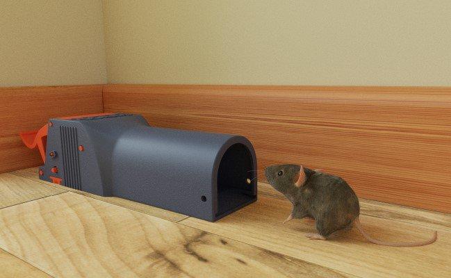 muizenval zonder aanraken